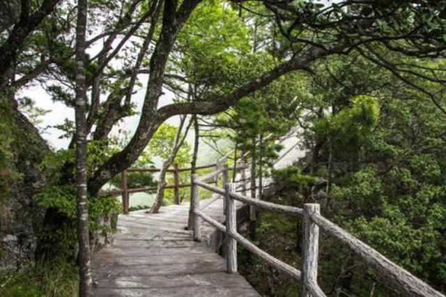 中国已有12条国家森林步道 全长超22000公里