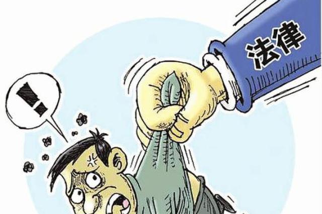 桐城法院开庭审理一起涉恶犯罪集团案