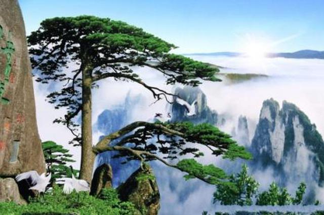 黄山风景区游客开始平稳回落