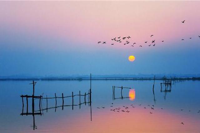 安徽庐江:山村蝶变打卡地  巨幅国旗燃激情