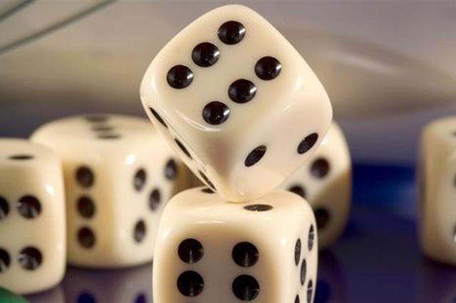 """冒充""""白富美"""" 引网友赌博 合肥一团伙获利280余万"""