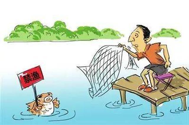 """改变长江""""无鱼"""" 禁渔之外还要做什么"""