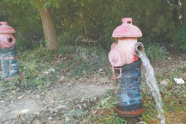 消防栓水阀大开 自来水白白流淌