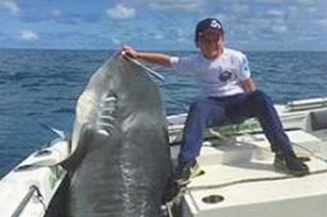 40千克重的8岁男孩钓上314千克重鲨鱼