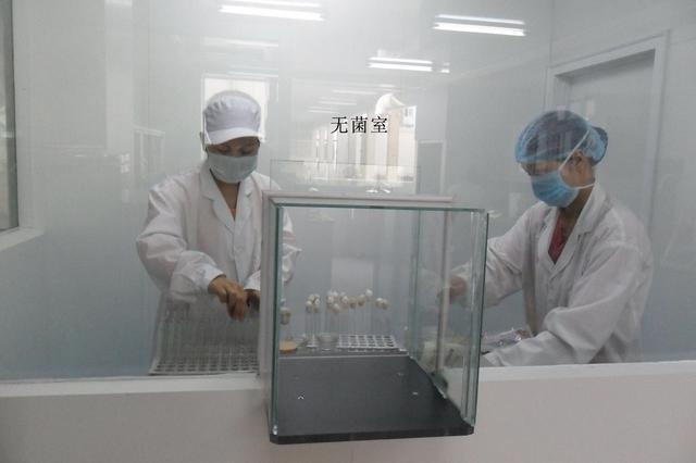 安徽省首家耕地质量标准化验室落户界首