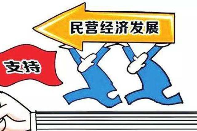 淮北市召开保护民营企业发展专项督察动员会