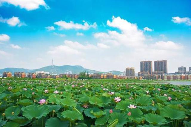 淮北市园林局大力改善桓谭公园环境