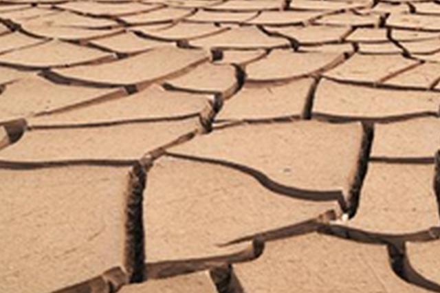 池州市防指启动抗旱III级应急响应