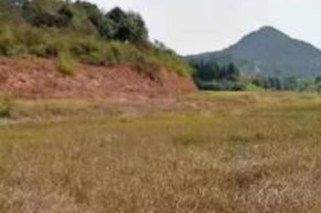 安徽省水利厅旱灾防御应急响应提升至Ⅲ级