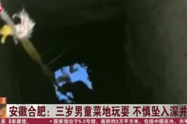 安徽合肥:三岁男童菜地玩耍  不慎坠入深井