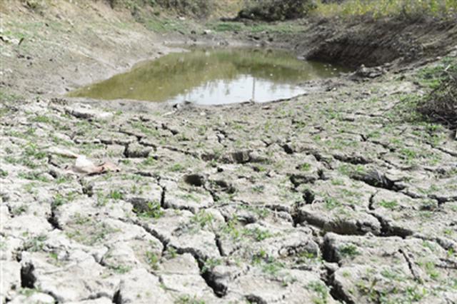 安徽省正遭遇近40年最严重的伏秋旱