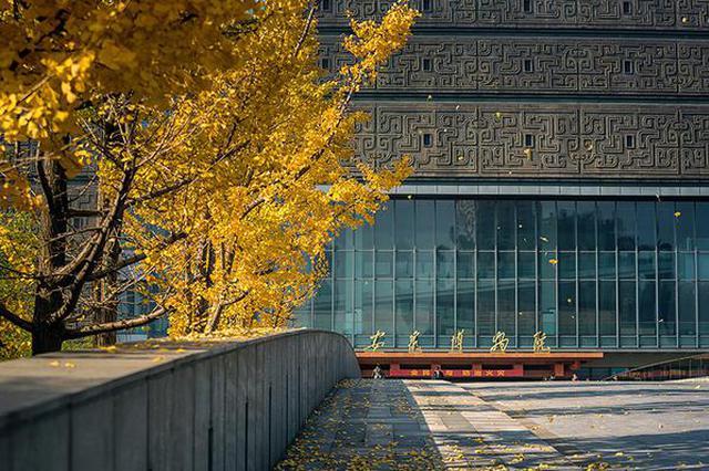 安徽博物院迎来63岁生日
