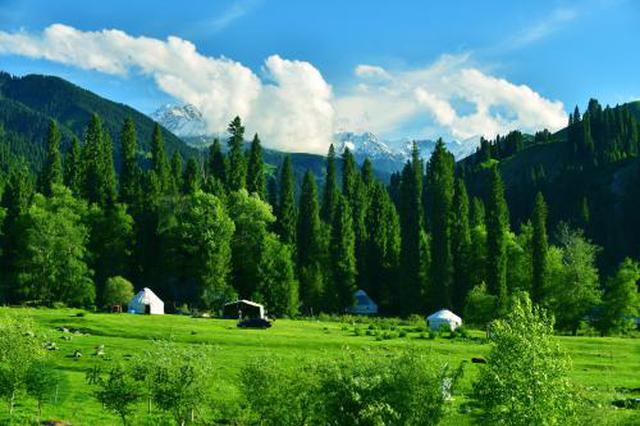 我国国家森林城市增至194个