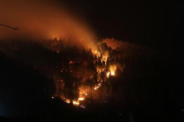 安徽滁州突发山火 驻训官兵紧急救援