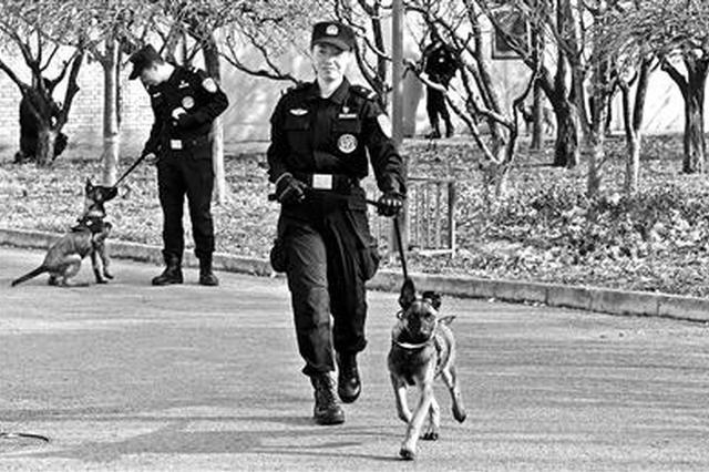 """首批警用克隆犬正式""""入警"""""""