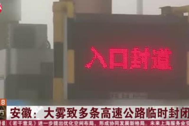 安徽:大雾致多条高速公路临时封闭