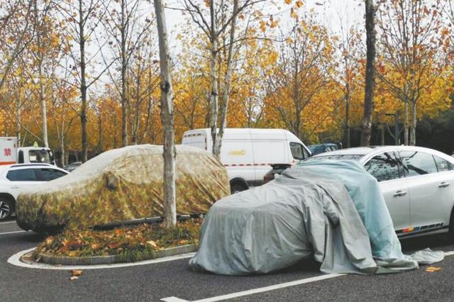"""雕塑公园停车场有车辆""""鸠占鹊巢"""""""