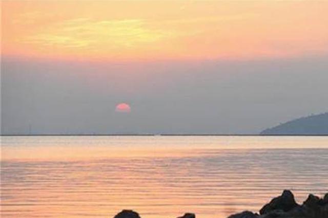 """安徽巢湖:湿地重生再现""""候鸟天堂"""""""