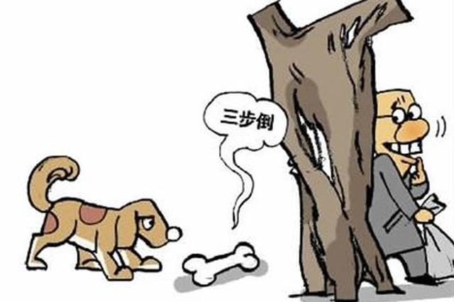 """长丰双墩集贸市场又现""""狗肉江湖"""""""