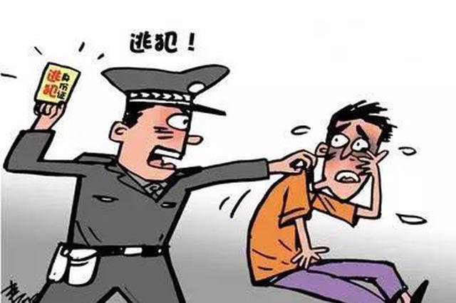 逃亡14年画上句号 命案逃犯被押解回亳州