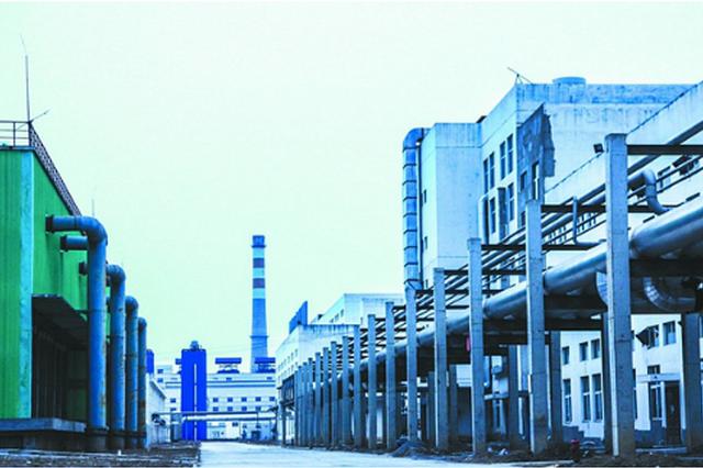 安徽太和经开区拓展医药产业国际合作