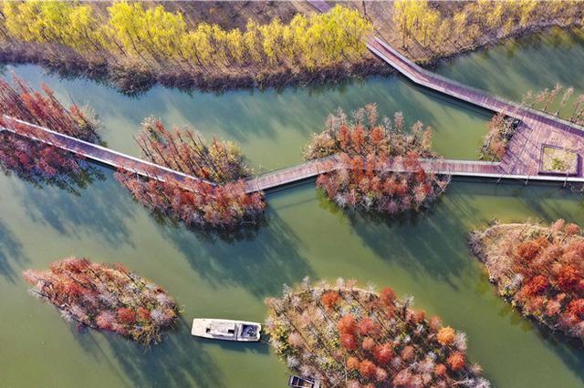 航拍:冬日陵西湖 生态惹人醉