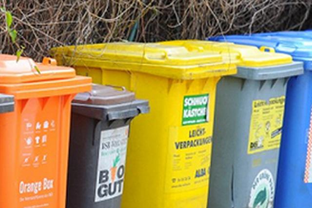合肥一小区垃圾分类正确率高达96.49%