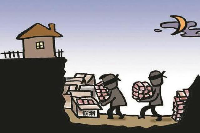 安徽警方破特大网售假烟案