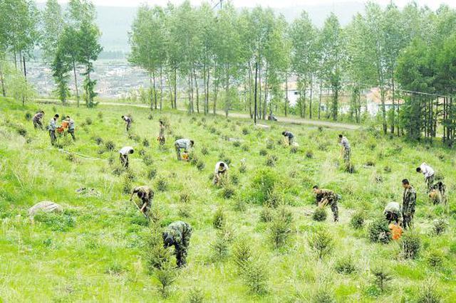 2020年安徽计划完成人工造林60万亩