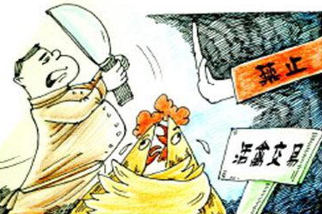 防控不是一时一事 建议关停活禽市场