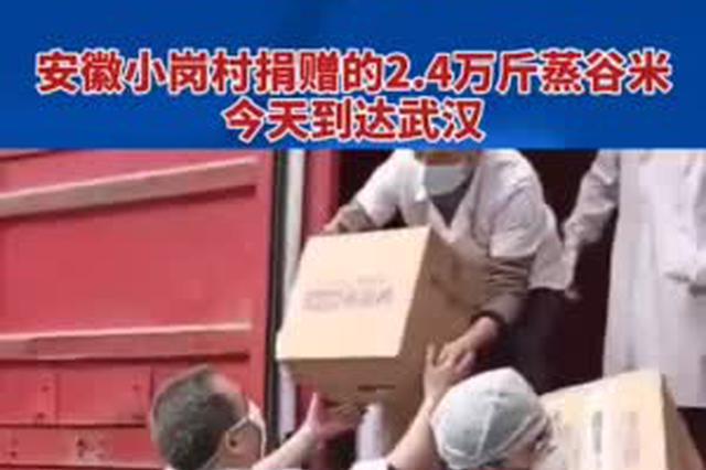 安徽小岗村捐助的2.4万斤蒸谷米今天送达武汉医院