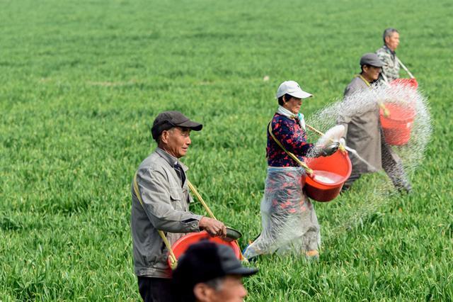 春耕时节 在田野里播撒希望