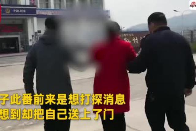 """芜湖一女赌徒到派出所""""打探""""同伙消息被逮个正着"""