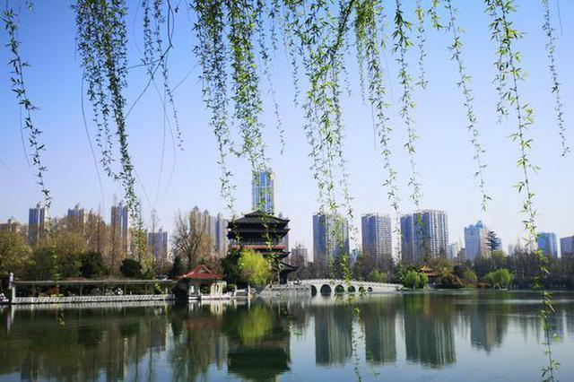 春光正好 市民走出家门到公园迎春天