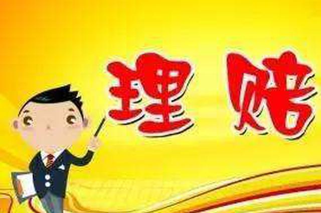 合肥3月29日起恢复交通事故快处业务办理