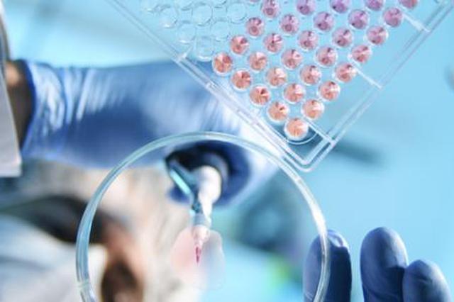 拉美地区新冠肺炎确诊病例超过1.3万