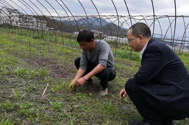 合肥:优化金融服务 支持春耕备耕