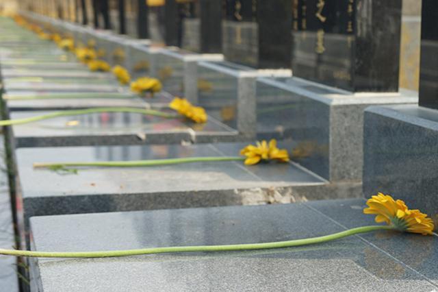 合肥市小蜀山陵园开展免费献花祭扫服务
