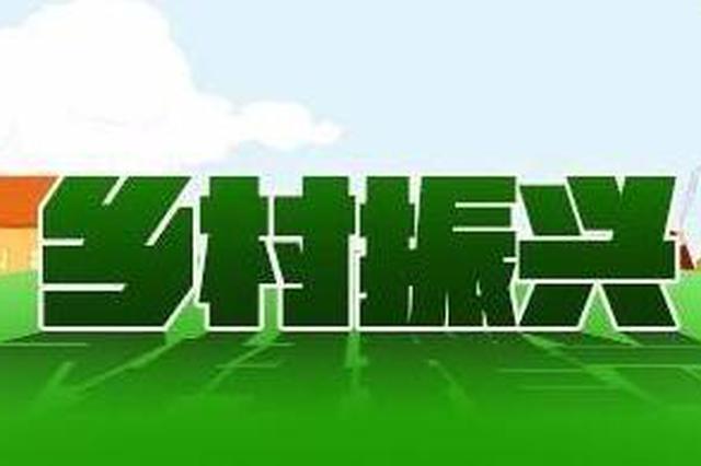 """安徽庐江:""""田保姆""""为乡村振兴注入新动能"""