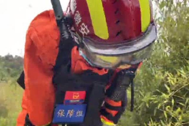 2020年安徽省地震救援实战演练
