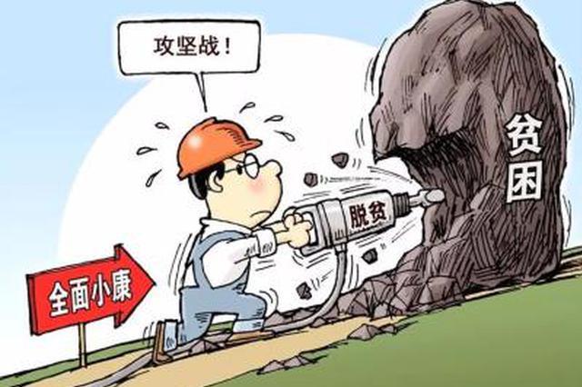 发挥行业扶贫优势 电力先锋照亮脱贫致富路