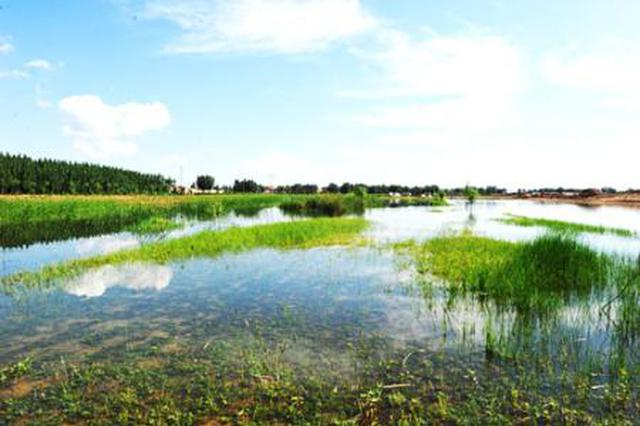 湿地生态补偿 要让补偿的补得起、被补的资金够用