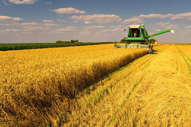 安徽麦收进度将过半 已收获小麦2100万亩
