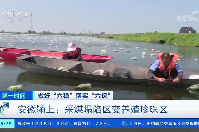 安徽颍上:采煤塌陷区变养殖珍珠区