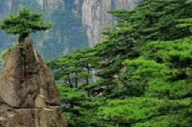 安徽建成两座国家级森林生态系统定位研究站