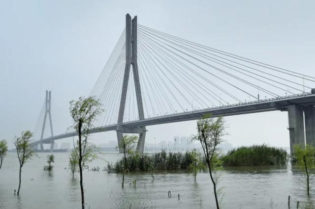 长江安庆站水位17.60米 超警戒水位0.90米