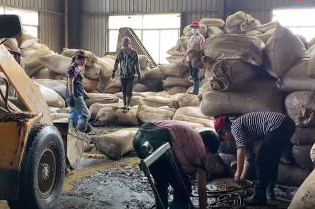 安徽歙县:一茶企3000吨茶叶被泡 损失9000万元