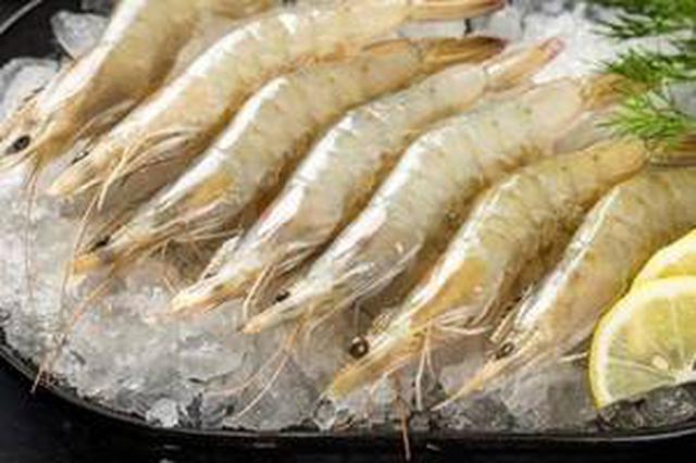 安徽省紧急排查厄瓜多尔进口南美冻白虾
