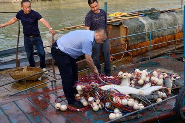 立案9件 安徽严查市场销售长江非法捕捞渔获物