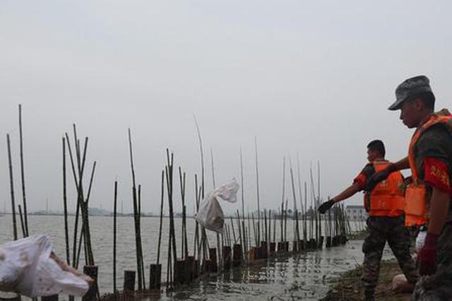 【防汛救灾第一线】人民子弟兵头顶烈日加固堤坝